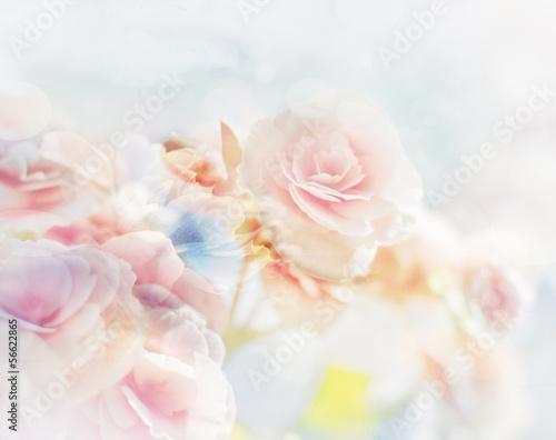 Fototapeta Romantic Roses in vintage style