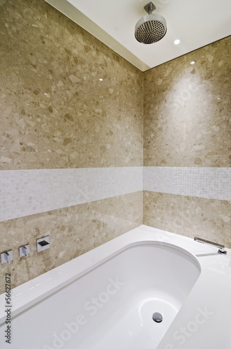 bath tub with shower