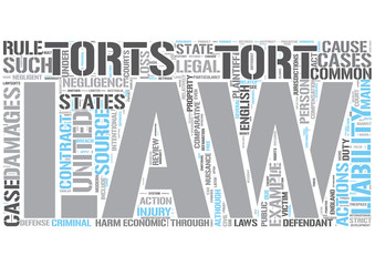 Tort law Word Cloud Concept