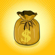Dollar Gold Bag of Money Save for Success.