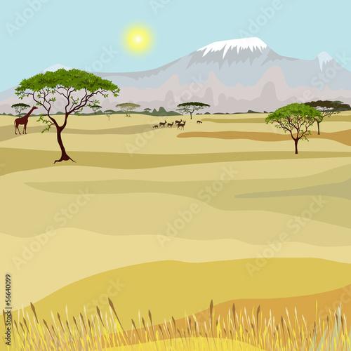 African Mountain idealistic landscape - 56640099