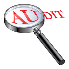 Audit Magnified