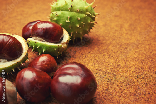 Groups of chestnut nuts on white close up . brown background