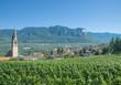 Leinwandbild Motiv Weindorf Tramin an der Südtiroler Weinstrasse