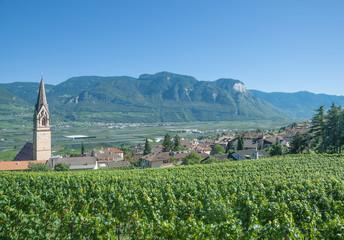 Weindorf Tramin an der Südtiroler Weinstrasse