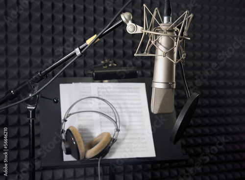 Condenser microphone in vocal recording room - 56646210
