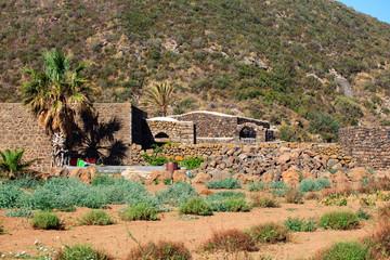 Plantation, Pantelleria