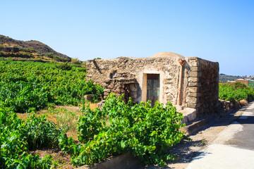 Val Ghirlanda, Pantelleria