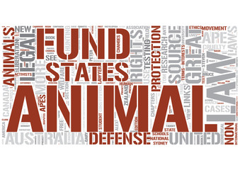 Animal law Word Cloud Concept