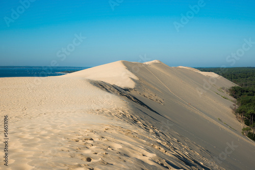 Papiers peints Cote La Dune du Pilat - Bassin d'Arcachon
