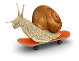 Snail and skateboard (clipping path included)
