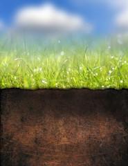 Underground soil