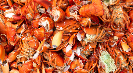 A close view of discarded cooked lobster shells