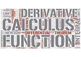 Calculus Word Cloud Concept poster