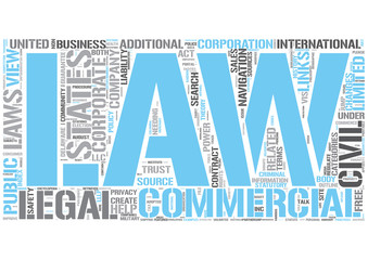 Business Law Word Cloud Concept