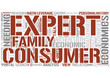 Consumer economics Word Cloud Concept