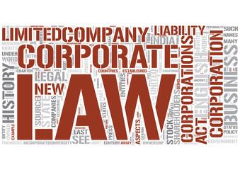Corporations Word Cloud Concept
