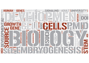 Developmental biology Word Cloud Concept