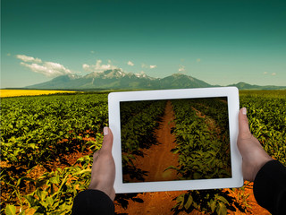 Agricultural scene and Tablet