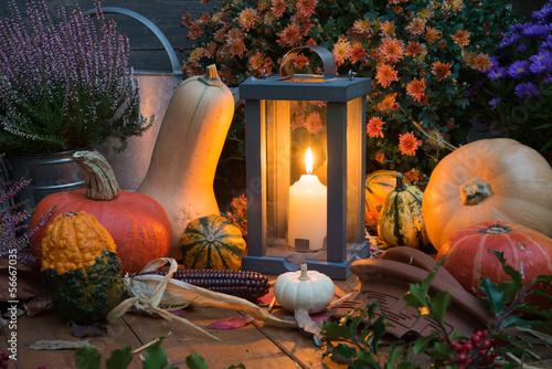 Herbstdeko mit Kürbissen und Laterne