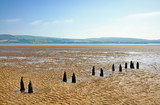 Parallel wooden posts in Morecambe Bay