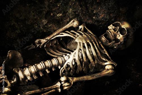 Skeleton - 56675200