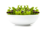 Bowl of mixed Salad with rucola, frisee, radicchio and lamb's le