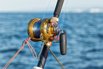 fishing reel and pole
