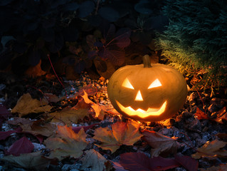 Halloween pumpkin in colorful garden