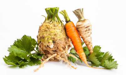 celeriac root and carrot with parsley roots  isolated on white