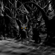 Haunted Forest - Black and White