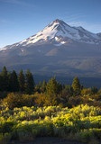 Sunrise Light Hits Mount Shasta Cascade Range California