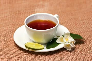jasmine tea  with fresh leaves and flowers