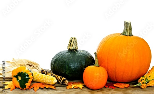 Harvest vegetables on wood with white background
