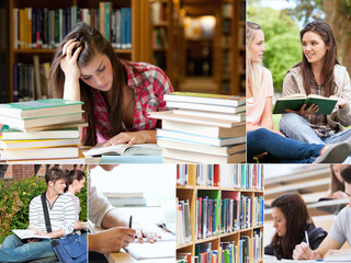 Collage of students studying