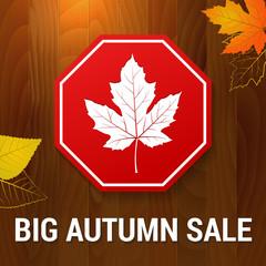 big autumn sale vector on wood background