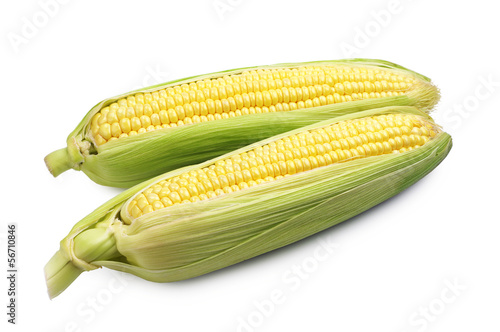 Two corn cob