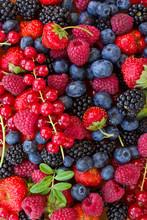 Bluberry, maliny, jeżyny i czerwone currrunt