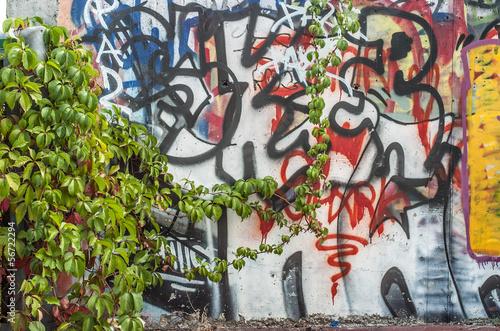 graffito natura