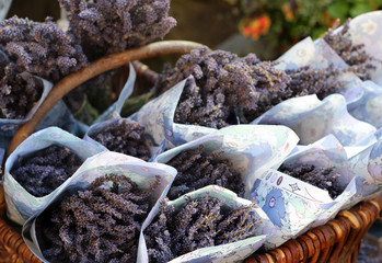Basket with lavender in Provence, France