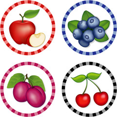 Apple, Blueberry, Cherry, Plum round gingham check tags