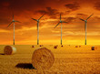 Straw bales with wind turbines in the sunset