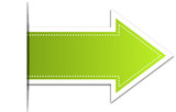 green pointer