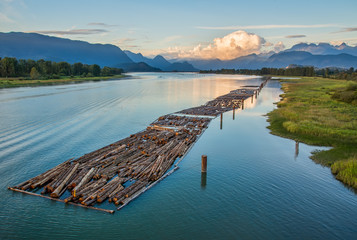 Logs Floating on River With Mountains