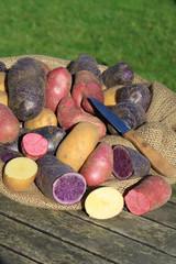 Alte Kartoffelsorten