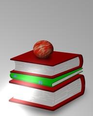 libri in esposizione