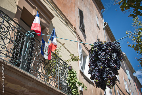 Fête des vendanges - Provence, France