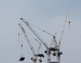 A Group of Tower Cranes on a Construction Site.