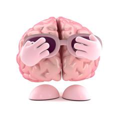 Brain hides