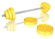Hantel mit Euromünzen-Gewichtsscheiben